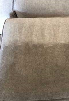 Affordable Upholstery Cleaning Placentia